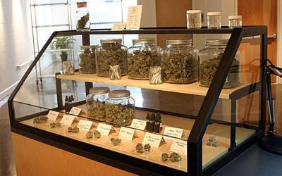 Top Reasons Cannabis Dispensaries Are Superior to Dealers