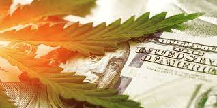 How Big Is The Cannabis Business?